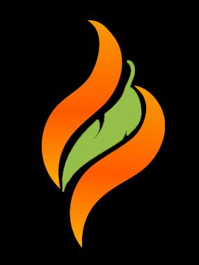 pellet experts flame
